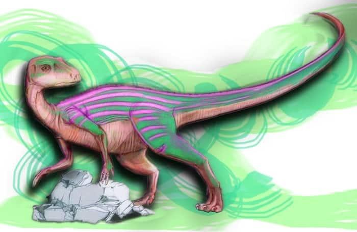 abrictosaurus-behavior