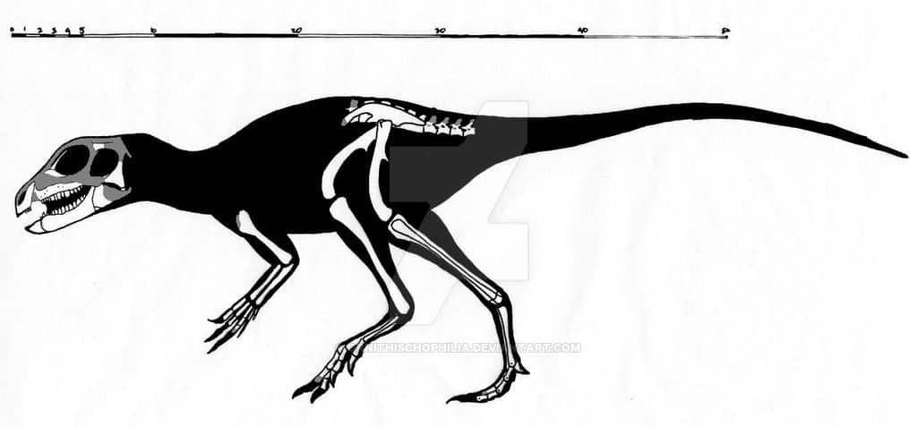 abrictosaurus_characteristics