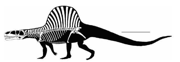 arizonasaurus-characteristics