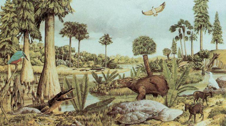 cenozoic-era