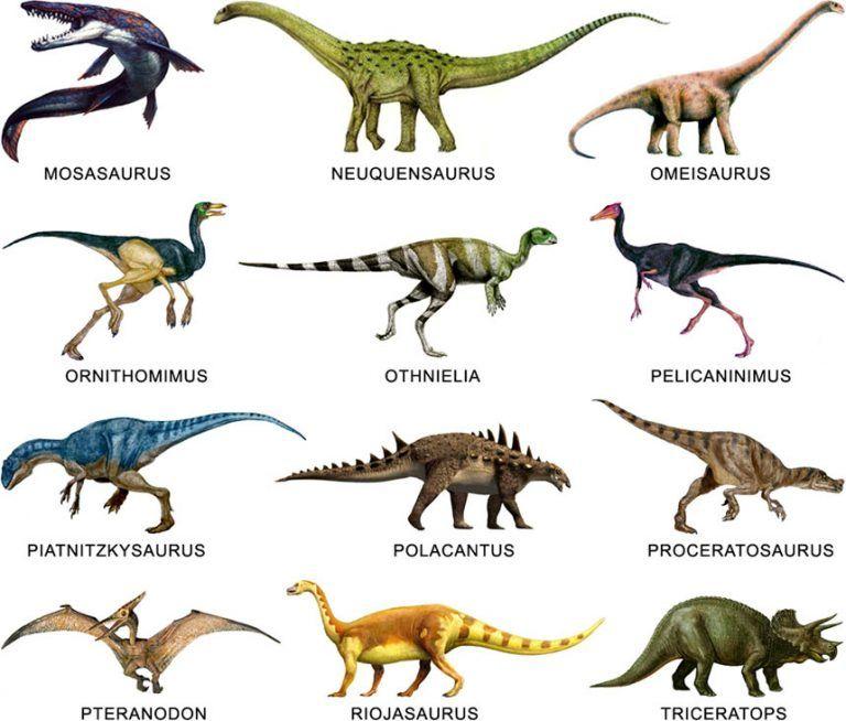 dnosaurs-types