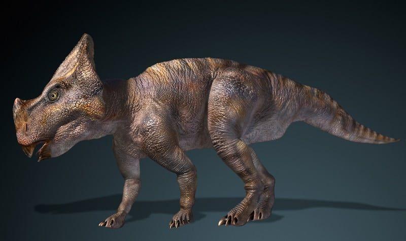 montanoceratops-dinosaur