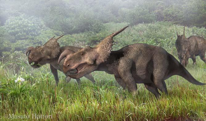 dinosaur-Einiosaurus