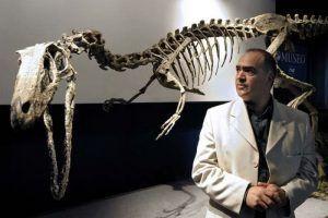 history-austroraptor