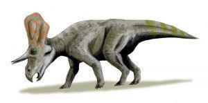 zunitoceratops