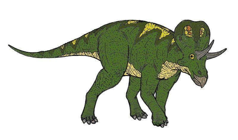 zunitoceratops-picture