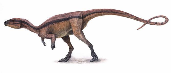 aetonyx-dinosaur