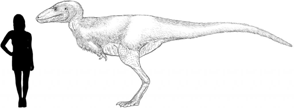 Alectrosaurus-picture