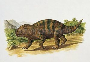 Cynognathus-dinosaur