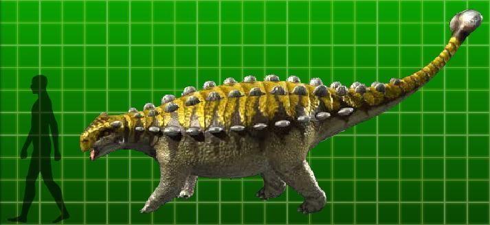 Pinacosaurus-picture