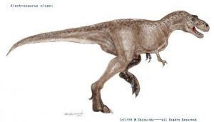 alectrosaururs-dinosaur