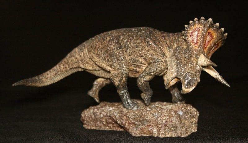 turanoceratops-photo