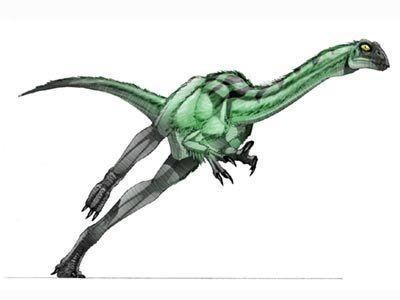kakaru-dinosaur