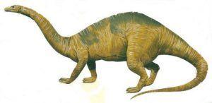 mussaurus-picture