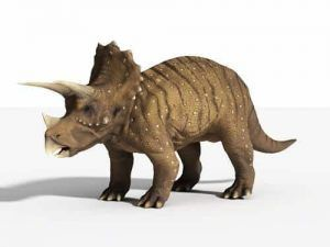 triceratops-dinosaur